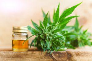 Cannabis Ligth